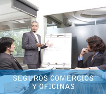 Seguros Comercios y Oficinas
